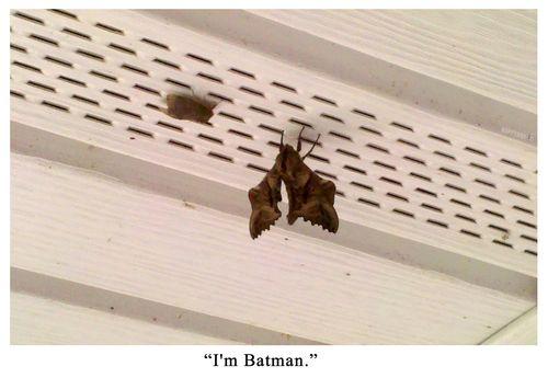 Im_batman